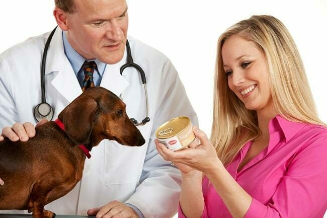 best-canned-foods-for-your-dog