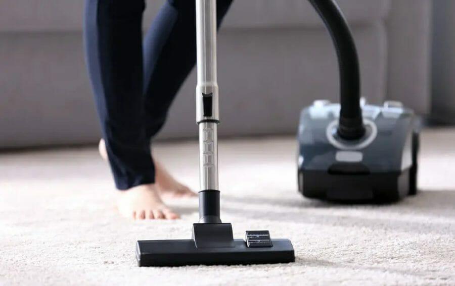 Best Shark Vacuum for Pet Hair and Hardwood Floors
