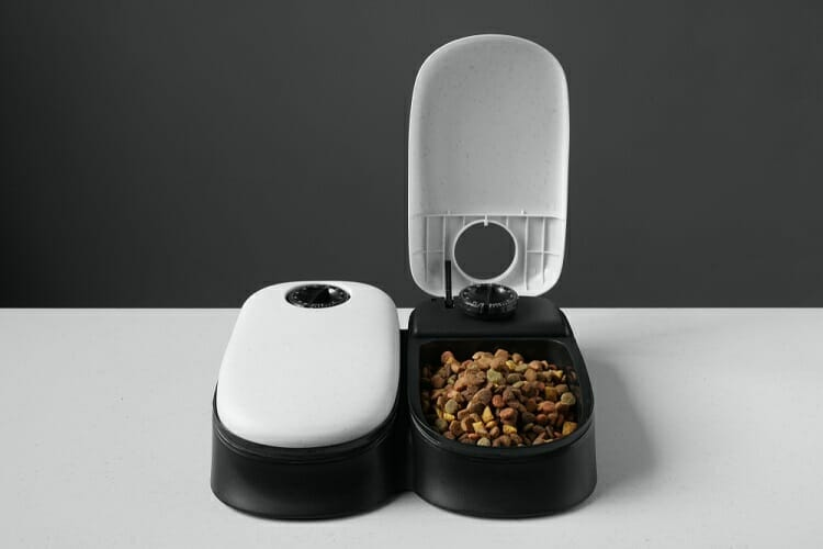 Best Automatic Cat Feeder For Wet Food 2019