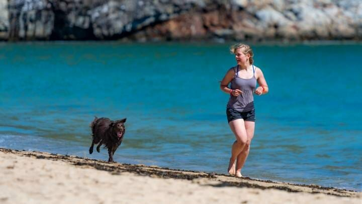 Regular exercise can be good for dogs with diabetes