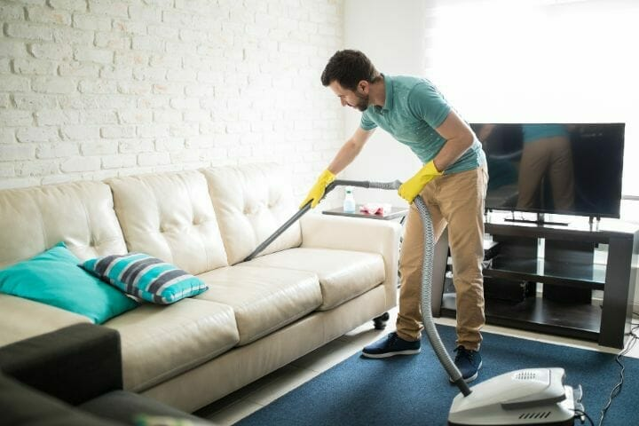 Remove Pet Hair from Couches