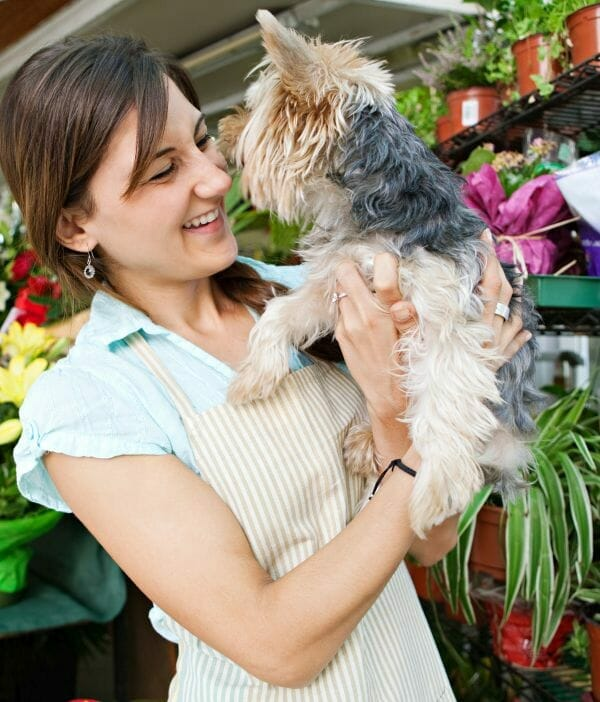 dogs have bad breath