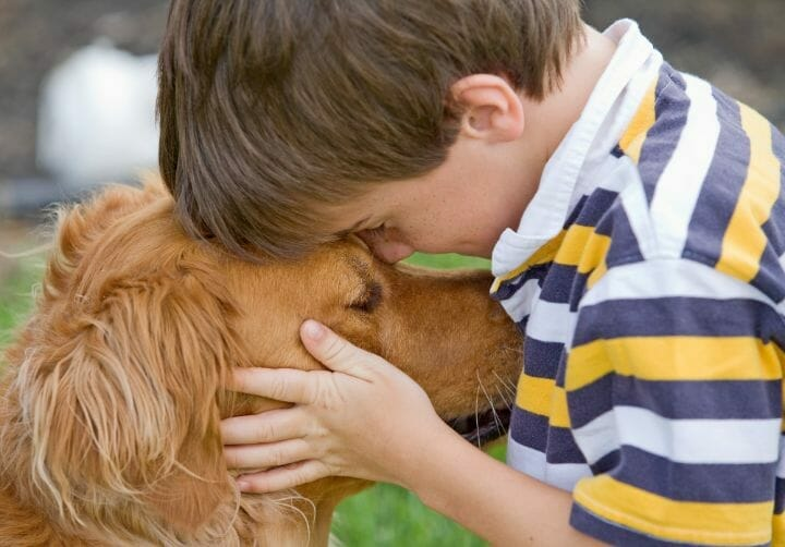 Best Dog for Special Needs Child