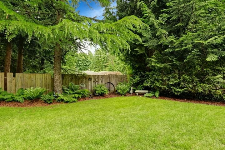 Yard with Fence