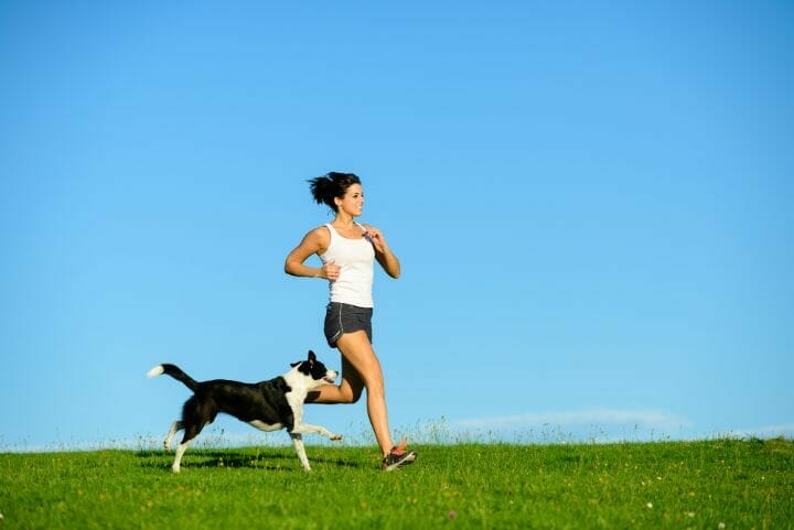 Small dogs as running buddy