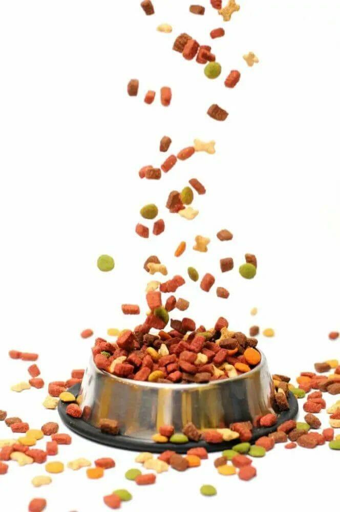 Dog Food Similar To Royal Canin